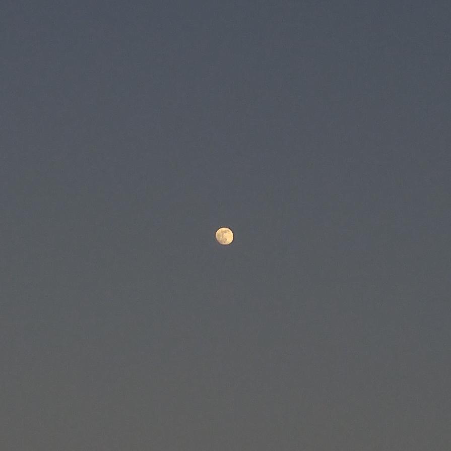 달.jpg