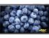 XPERIA Z5 Premium, 스크린샷도 1080p로 촬영