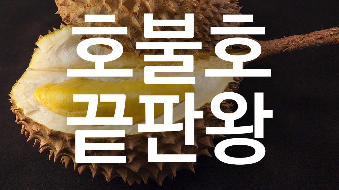 Durian_KO.jpg